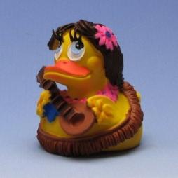 Hawaii Duck